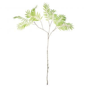 Palm-phoenix-branch-green-111cm